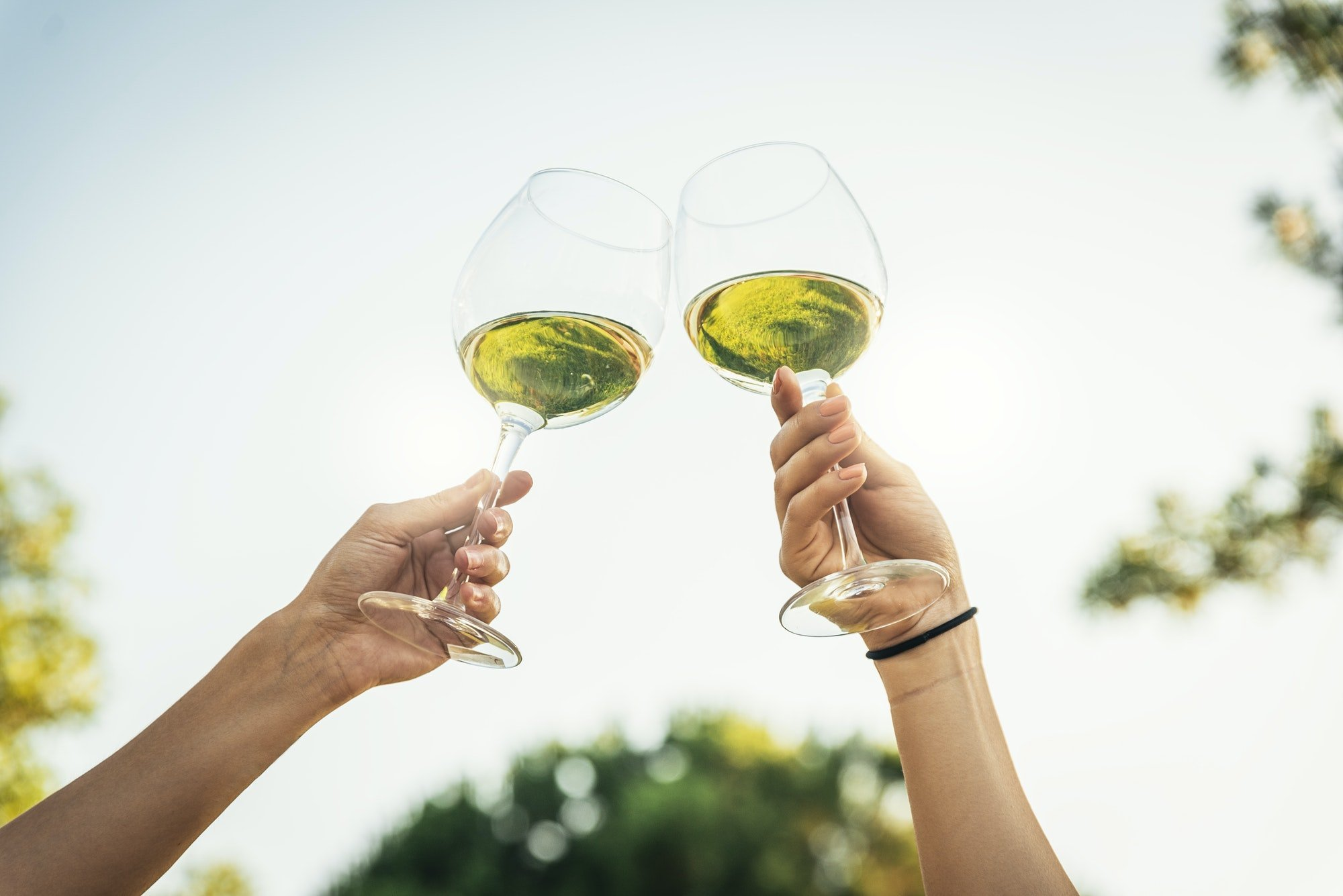 Female friends cheers clinking glasses of white wine.