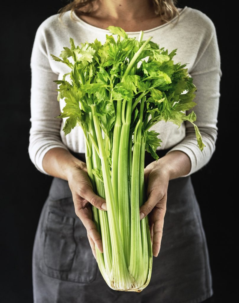 Closeup of hands holding fresh organic celery