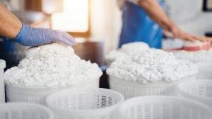 Preparation of sheep's milk ricotta