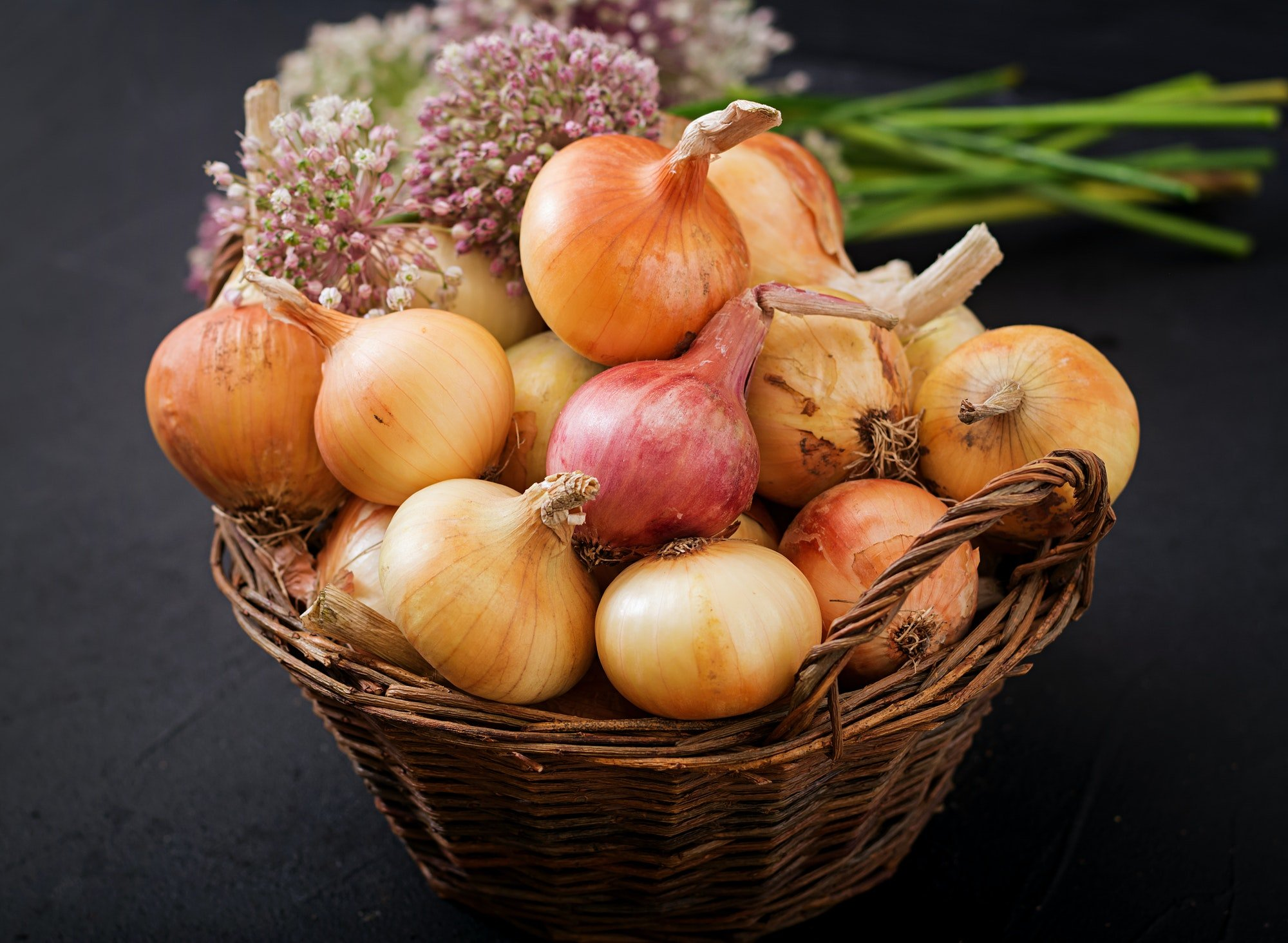 Fresh young onion bulbs and onion blossoms.