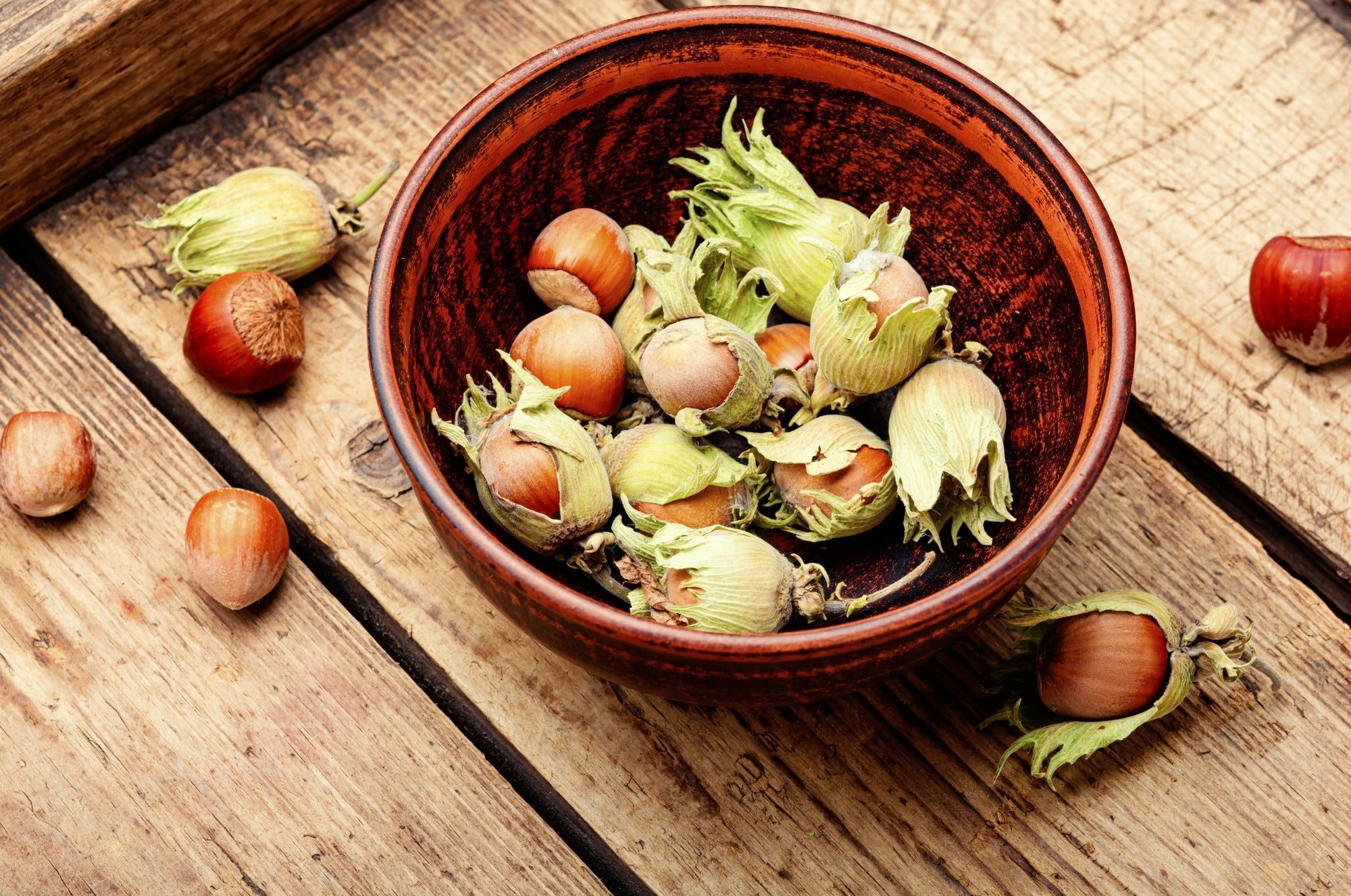 Hazelnuts or filbert