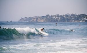 surfs up 🏄