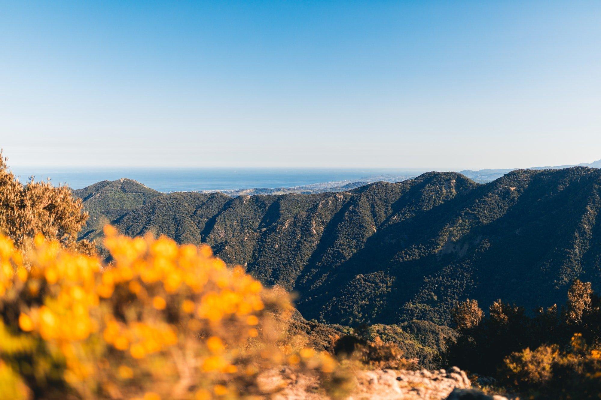 Aspromonte National Park, Calabria Italy