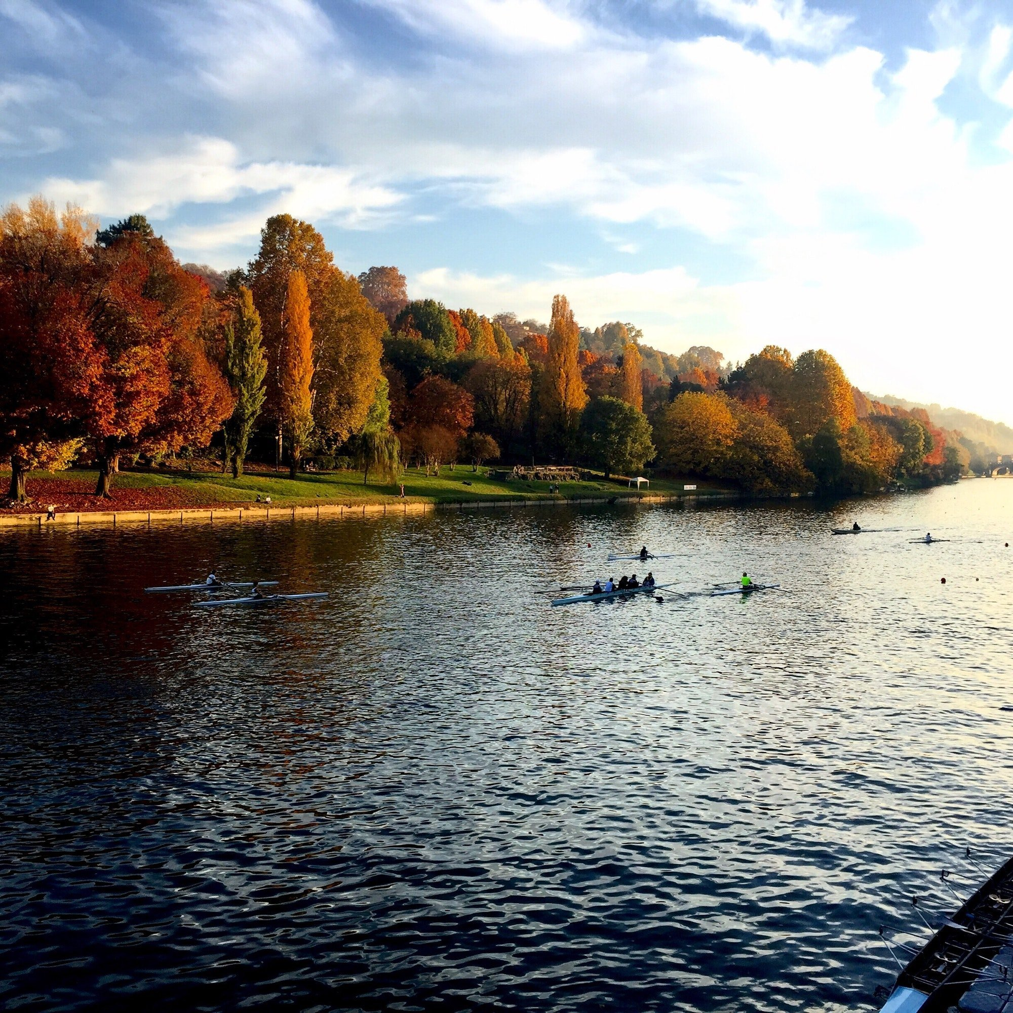 Rowing on the Po,Autumn in Torino